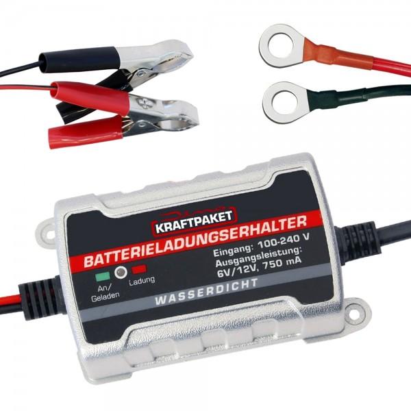 Dino KRAFTPAKET Auto KFZ Batterie Ladegerät Trainer Erhaltungsgerät 6/12V